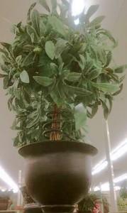 Mausoleum Decor: Plants, 5 ft